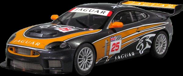 Jaguar 25